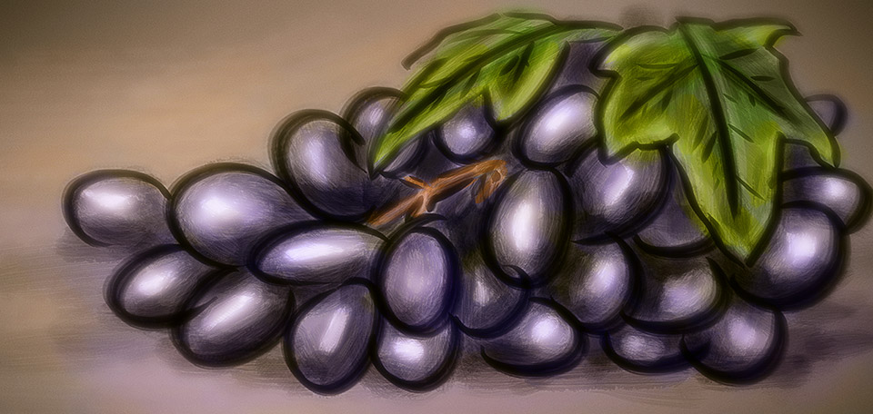 Fruitful in taste, dark in color, these red grapes bring a wave of refreshment on a hot Sunday afternoon. -- A Bunch of Grapes - Digital Art by Matthias Zegveld