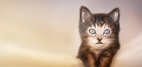 Beautiful Kitten - Digital Art by Matthias Zegveld