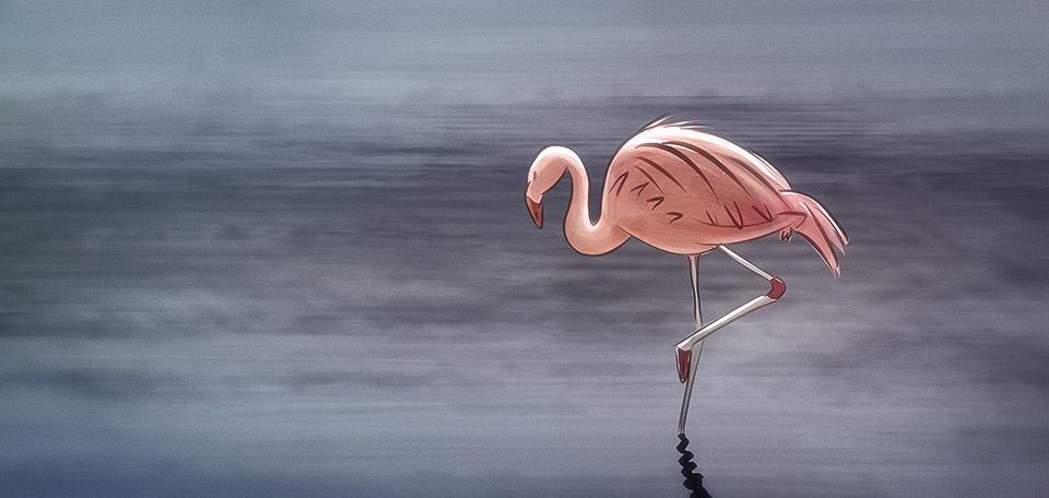 With her beautiful pink feathers and elegant long legs, this Flamingo is such a beautiful creature. -- El Flamenco - Digital Art by Matthias Zegveld