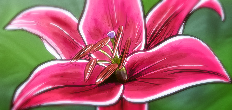 With its beautiful and bright pink colors, this flower is simply magnificent. -- Lily in the Field - Digital Art by Matthias Zegveld