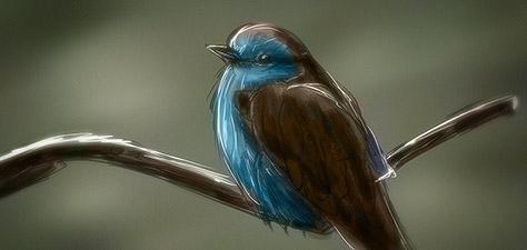 Little Bird - Digital Art by Matthias Zegveld