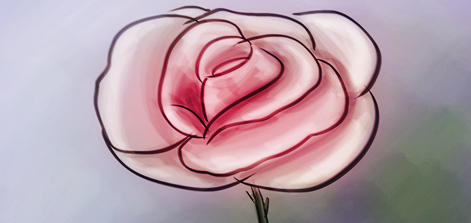 With leaves as large as apples, this big rose is as pink as it is large, in this cartoon-style drawing. -- The Big Rose - Digital Art by Matthias Zegveld