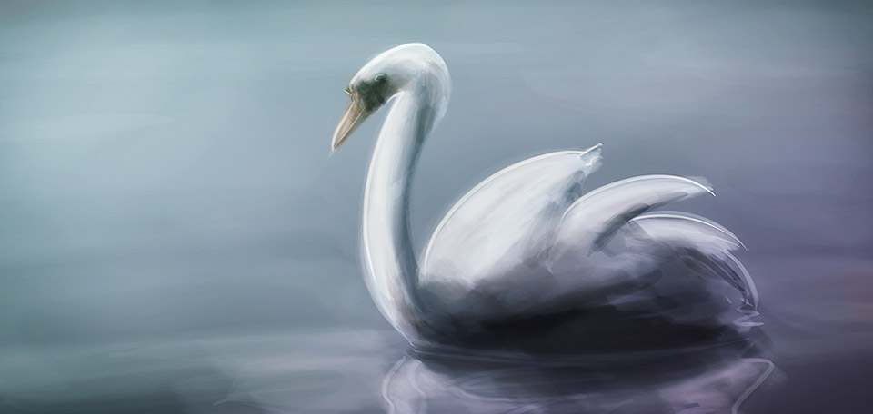 With her beautiful thin neck, and her bright white feathers, this swan is calmly cruising the pond. -- The Swan - Digital Art by Matthias Zegveld