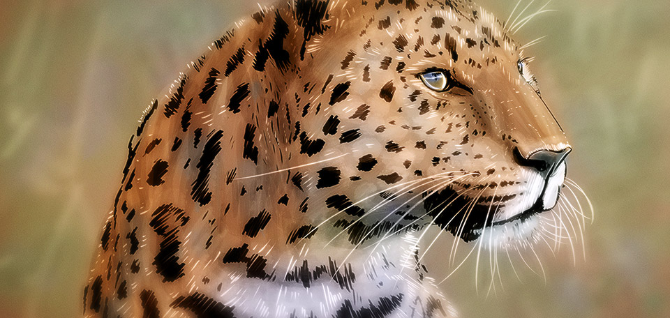 Impression of the Leopard - Digital Art by Matthias Zegveld